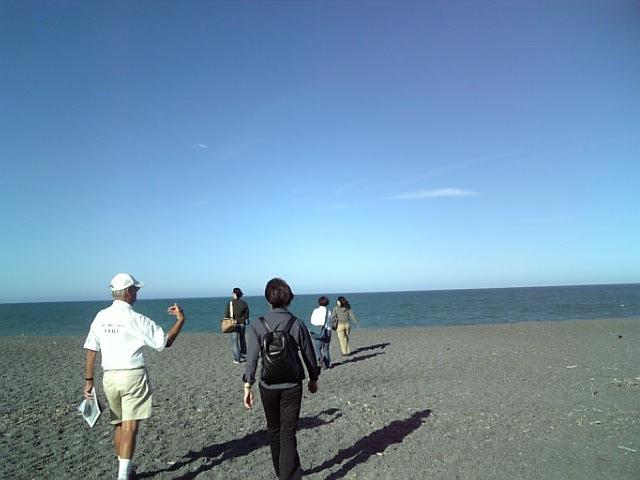 ニュージーランドに着きました
